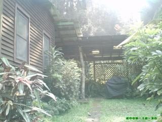 Prvt. Cottage nestled in 40 acres tropical Forest - Honokaa vacation rentals