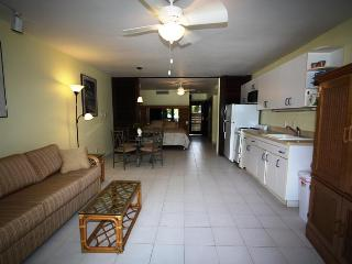 Sapphire Beachfront Condo- Excellent condition !!! - Saint Thomas vacation rentals