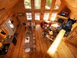Wears Valley Cabin - Privacy in the Woods - Image 1 - Sevierville - rentals