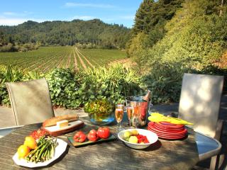 3 BD, 3 1/2 BA, Vineyard Views in Russian River - Guerneville vacation rentals