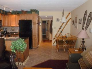 Quality Condo - Killington vacation rentals