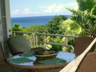 Hilltop Villa w/ pool & view. Walk to beach. - Image 1 - Rincon - rentals