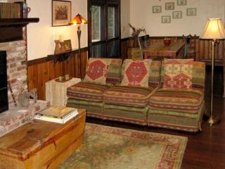 Mountain Cottage close to Asheville and Lake Lure - Gerton vacation rentals