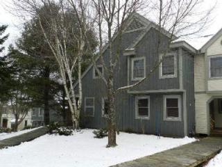 Spacious 4 Bed + Den Town Home w Community Center - West Dover vacation rentals