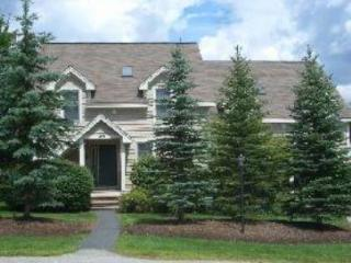 Spacious 4 bedroom townhome, sleeps 13 - West Dover vacation rentals