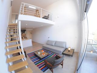 Brand New Duplex in Palermo Holly! - Buenos Aires vacation rentals