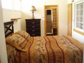 3bd/3ba-Steps to HotTub/Vail Bus-10 Min to Village - Vail vacation rentals