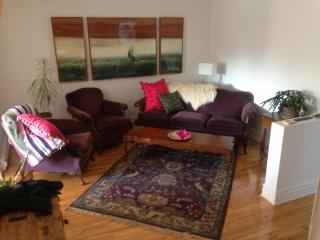 Sunny, chic and confortable appartement to rent - Montreal vacation rentals