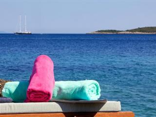 Luxury vacation villa - waterfront, full privacy - Vis vacation rentals