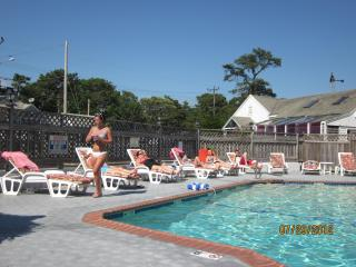 Cape Cod Dennisport 1 bedroom condo - Dennis Port vacation rentals