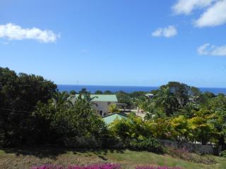 Royal Westmoreland -Luxurious one bed penthouse - Speightstown vacation rentals