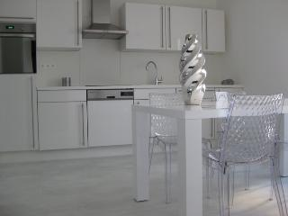 City apartment - Strasbourg vacation rentals