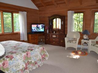 Lovely Vacation House, Low Prices, WIFI/HDTVs - Wintergreen vacation rentals