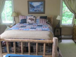 Brookside Cottage 4+ BR Seclusion close to town - Lake Placid vacation rentals