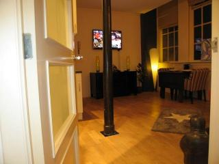 Beautiful apartment in the center of Amsterdam - Amsterdam vacation rentals