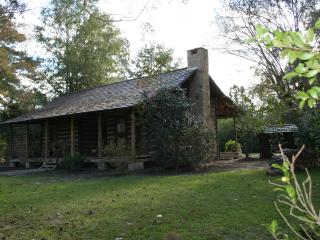 1885 log cabin and modern cabin B&B in Hattiesburg - Hattiesburg vacation rentals