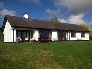 HOUSE ON 3.75 ACRES - 3 bedroom home in County Clare, nr. Ennis, IRELAND - Ballyclare - rentals