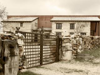 a rural house in the countryside of deep Spain - Burgos vacation rentals