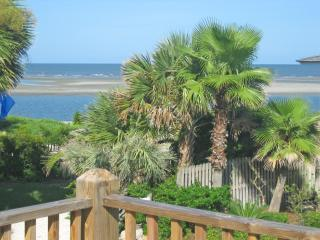 Cozy--Charming--Steps to the Beach! - Saint Simons Island vacation rentals