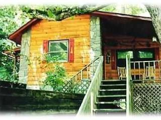Welcome to the White Oak Cabin. Rock on the porch or go down to the creek and see the ducks. - Homey Cabin on a Trout Stocked Creek. Sleeps 4. - Bryson City - rentals