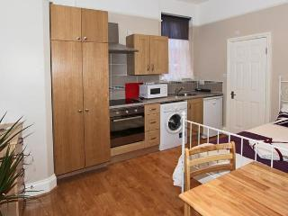 NEW!!! Flat in Willesden Green, zone 2.London - London vacation rentals