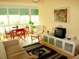 Beach, Surf & Lisbon - Costa da Caparica Apartment - Costa da Caparica vacation rentals