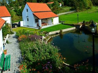 Bed  and Breakfast Rieu du Moulin - Frasnes-Lez-Anvaing vacation rentals