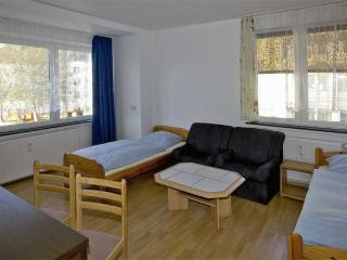 Vacation Apartments in Bremerhaven - completely renovated, Wifi, modern (# 3530) - Bremen vacation rentals