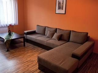 Nice, comfortable Apartment in Gdynia, Poland (1) - Gdynia vacation rentals