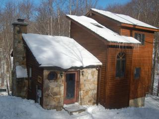 3 Bedroom Home on Ski Slope Canaan Valley WV - Canaan Valley vacation rentals