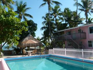 Apt at the Florida Keys - Hollywood vacation rentals