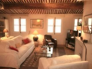 Apartment Entrecasteaux terrace downtown Aix - Aix-en-Provence vacation rentals