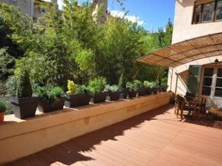 Amazing apartment 3BR with Terrace downtown Aix - Aix-en-Provence vacation rentals