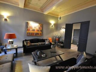 Luxury 3BR 3Bath in center town Aix enProvence - Bouches-du-Rhone vacation rentals