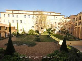 Apartment Nativité terrace and lift downtown Aix - Aix-en-Provence vacation rentals