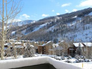 Beautiful 1 Bedroom Condo Near Vail Village - Vail vacation rentals
