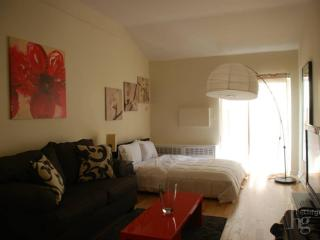 FULLY FURNISHED -PRIVATE PATIO-22ND ST-DOORMAN - New York City vacation rentals