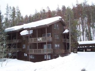 3BR/3B town home, close to Mtn on Burgess Creek Rd - Steamboat Springs vacation rentals