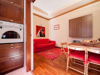 Magnificent Apartment proximate to Vatican - Rome vacation rentals