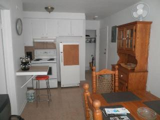 Appartment Furnished in Little Italy, Montreal - Montreal vacation rentals