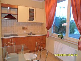 Apartment In The Hart Of Gdansk Baltic Coast - Gdansk vacation rentals