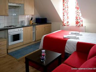 Large studio flat for short term rent in London - London vacation rentals