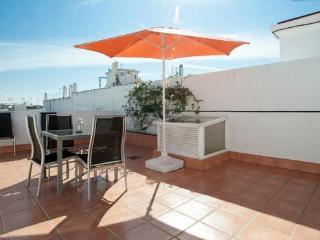 Penthouse with private terrace in Seville Center - Seville vacation rentals