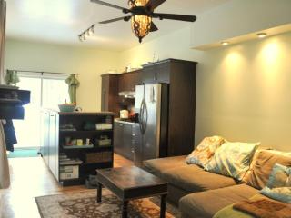 Gorgeous Furnished Condo Near Downtown Montreal - Montreal vacation rentals