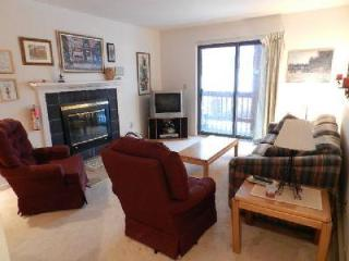Snow Mt. Village 223 - West Dover vacation rentals