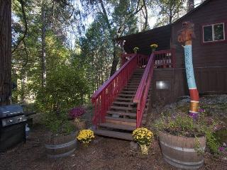 Spinning Wheel Yosemite - THE RIVERSIDE CABIN - Groveland vacation rentals