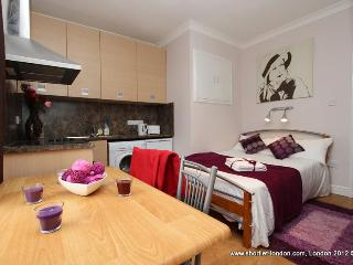 New budget friendly apartment in London for rent - London vacation rentals