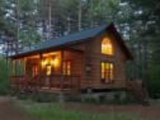 Log Cabin - Lake Placid / Whiteface ski chalet - Wilmington - rentals