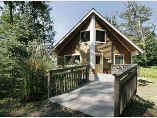 Lake Michigan Modern Cottage Private 189 Ft Beach - South Haven vacation rentals