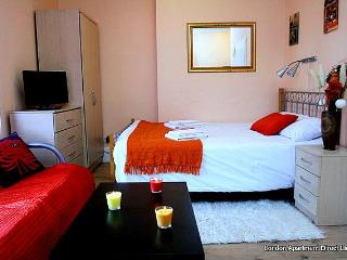 A large studio flat to rent in North West London - London vacation rentals